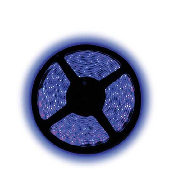BOBINA STRISCIA LED BLU SMD3528 300 USO INTERNO 12V CON ALIMENTATORE